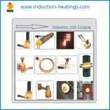 Perfeito proteger o calefator de imersão de aço da indução do forjamento de Rod da capacidade