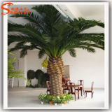 Factory Direct Date artificielle palm tree pour la décoration de jardin