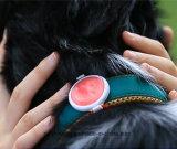 De Monitor van de Activiteit van het huisdier P1, GPS van het Huisdier de Kraag van de Drijver