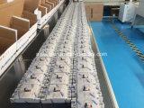 125A/100A/63A gevormde Regelbaar van de Stroomonderbreker van het Geval Thermische Magnetische