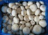Замороженный гриб кнопки или замороженные овощи