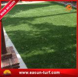 عشب اصطناعيّة مرح سجادة من مصنع [شنس]
