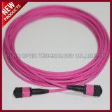 12 optique Fibes PSG MPO Aqua OM3 Câble de lignes réseau