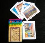 Cartões de jogo personalizados do papel/cartões do póquer/Plastic/PVC/Tarot/Game