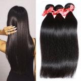 Das luzes elevadas reais das mulheres do cabelo humano da natureza da alta qualidade Toupee reto de seda
