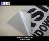 [بروتكتيف فيلم] [أنتي-وف] لأنّ ألومنيوم قطاع جانبيّ