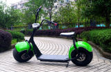China Yongkang Populares Scooter Eléctrico 1000W Citycoco Scooter (JY-ES005)