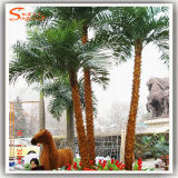 Decoration를 위한 상록 Fiber Glass Artificial Palm Tree