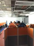 필리핀 외침 센터 칸막이실 워크 스테이션 (FOH-WS32)에 있는 성공적인 케이스
