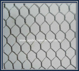 O hexagonal eletro galvanizado Wire Mesh da China Factory