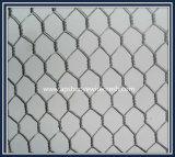 Electro galvanizado alambre de malla hexagonal de China de fábrica