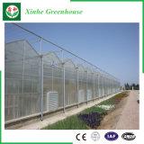 농업 야채 꽃을%s 다중 경간 PC 장 녹색 집