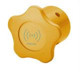 Sauna Bathroom Cabinet Gold Electronics Door Lock RFID Open Card