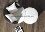 Base di sofà moderna del sofà del rattan del salone della mobilia dell'hotel (YT459)