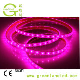 Volle des Spektrum-5050 Streifen-Beleuchtung Pflanzendes wachstum-LED mit rotes Blau-Farbe
