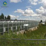 Выбросов парниковых газов из высококачественного стекла для сельскохозяйственных