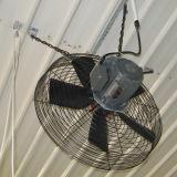 Ventilatore per la Camera di pollicultura