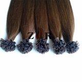 30 cores desenhadas Natural Cabelos russo de cabelo humano de ponta plana barbeiro