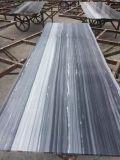 Laje de mármore azul italiana de Palissandro para o projeto