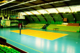 Verkauf Kurbelgehäuse-Belüftung China-Facroty Sports Bodenbelag für Volleyball-Gericht