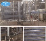 Convoyeur de refroidissement en spirale Hotsell / congélateur en spirale IQF
