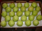 Neue Getreide-Qualität für den Export von goldenem Apple