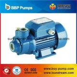 세륨 (QB 시리즈)를 가진 대중적인 좋은 품질 와동 펌프