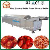 Águas Ruças Blanching máquina Máquina de branqueamento de tomate para venda