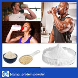 Polvere naturale della proteina della transferrina umana di nutrizione della polvere della proteina del commestibile