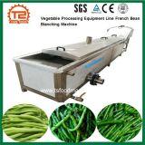 Équipement de transformation de légumes le haricot de blanchiment de ligne de la machine
