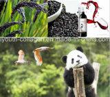 上EUの有機性黒い日本酒、豊富なアントシアニン、血のトニックAntiaging、放射抵抗抗癌性アミノ酸防止のIschemic打撃