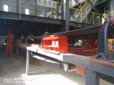 Маштаб конвейерной ролика Multi-Зеваки Ics электронный для минирование/угля/силы/завода цемента/еды