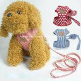 Haustier-Kragen-Leine-Produkt-Zubehör-Zubehör-Hundehalsring