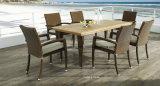 Cadeira & tabela ao ar livre do banquete do jardim que jantam restaurante ajustado da alta qualidade que janta o jogo (YT362)