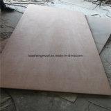 [هيغقوليتي] تجاريّة بحريّة خشب رقائقيّ [بنسل سدر] خشب رقائقيّ لأنّ أثاث لازم