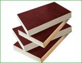 Todas las clases de película hicieron frente a la madera contrachapada y a la madera contrachapada marina