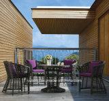 レストランの&Banquet (YT641)のための普及した新しいデザイン卸売の屋外の柳細工の家具の円卓会議そして椅子