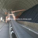 Nastro trasportatore resistente freddo/nastro trasportatore di nylon del tessuto/nastro trasportatore d'acciaio del cavo