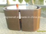 Conjuntos de mesa de café usados Rattan / Indoor