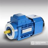 Hochwertiger Hochleistungs- WS-Fahrwerk-Motor