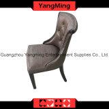 Корейский минималист стул типа (YM-DK06)