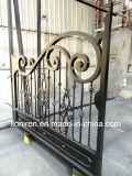 Caldo-Vendita dei cancelli classici dell'azionamento del ferro del giardino