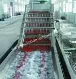 Grote Commerciële Appel/Peer/Oranje Wasmachine
