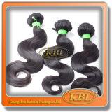 브라질 Virgin Hair의 머리 Bundles