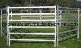 Горячая окунутая гальванизированная портативная загородка лошади