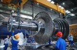 Generador de turbina doble de vapor de la extracción