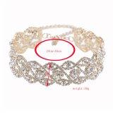 Новое ожерелье Chocker ожерелья диаманта ювелирных изделий Chocker способа преувеличенный