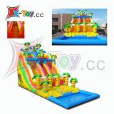 Faites glisser l'eau gonflable, dragon gonflable est diapositive (CH2014)