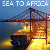 Seefracht des Verschiffen-Meer, zu Pointe Noire der Kongo von China