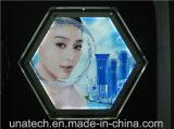 LED que hace publicidad del rectángulo ligero cristalino de acrílico de la visualización